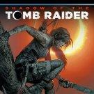 Shadow of Tomb Raider STEAM access digital edition + Kingdom Come Deliverance