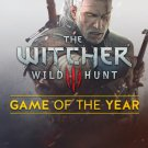 The Witcher 3 III Wild Hunt Game of the Year Edition STEAM shared account NO DVD