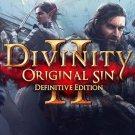 Divinity Original Sin 2 Definitive Edition STEAM account access offline