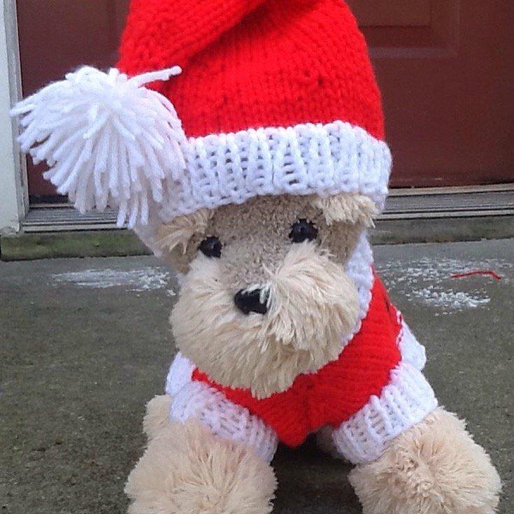 Santa paws dog sweater set