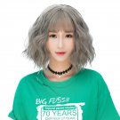 Female Fluffy Hair Wig with Bangs Wigs Natural Looking Wig WS05 F1 Steel Gray Steel Gray