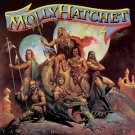 MOLLY HATCHET Take No Prisoners BANNER Huge 4X4 Ft Fabric Poster Tapestry Flag Print album art
