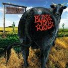 BLINK 182 Dude Ranch BANNER Huge 4X4 Ft Fabric Poster Tapestry Flag Print album cover art