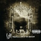 KORN Take a Look in the Mirror BANNER Huge 4X4 Ft Fabric Poster Tapestry Flag Print album cover art