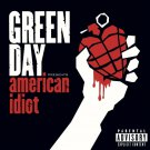 GREEN DAY American Idiot BANNER Huge 4X4 Ft Fabric Poster Tapestry Flag Print album cover art