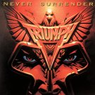 TRIUMPH Never Surrender BANNER Huge 4X4 Ft Fabric Poster Tapestry Flag Print album cover art
