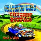 GRATEFUL DEAD Truckin' up to Buffalo BANNER Huge 4X4 Ft Fabric Poster Tapestry Flag album cover art