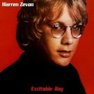WARREN ZEVON Excitable Boy BANNER Huge 4X4 Ft Fabric Poster Tapestry Flag Print album cover art