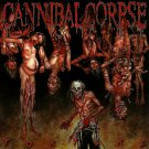 CANNIBAL CORPSE Torture BANNER Huge 4X4 Ft Fabric Poster Tapestry Flag Print album cover art