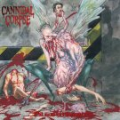 CANNIBAL CORPSE Bloodthirst BANNER Huge 4X4 Ft Fabric Poster Tapestry Flag Print album cover art