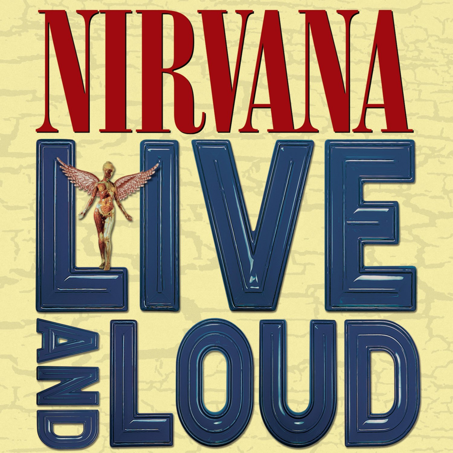 NIRVANA Live and Loud BANNER Huge 4X4 Ft Fabric Poster Tapestry Flag Print album cover art