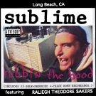 SUBLIME Robbin' the Hood BANNER Huge 4X4 Ft Fabric Poster Tapestry Flag Print album cover art
