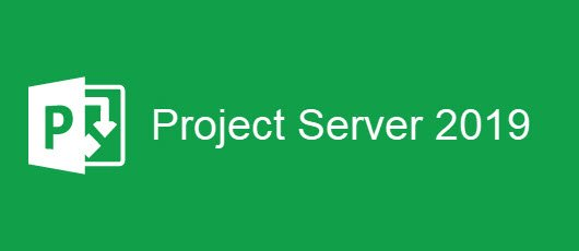 Microsoft Project Server 2019 - 1 Server License with 5 Users CAL