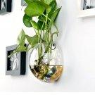 Keythemelife Semicircular Glass Vase