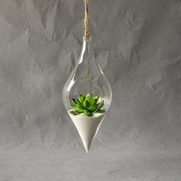 Clear Container Indoor Plant Vase