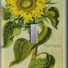 Vintage Botanical Illustration Sunflower Single Switch Plate