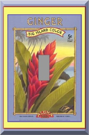 Vintage Tropical Ginger Flower Seed Packet Single Switch Plate