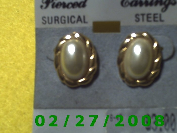 Earrings, Surgical Steel (023)