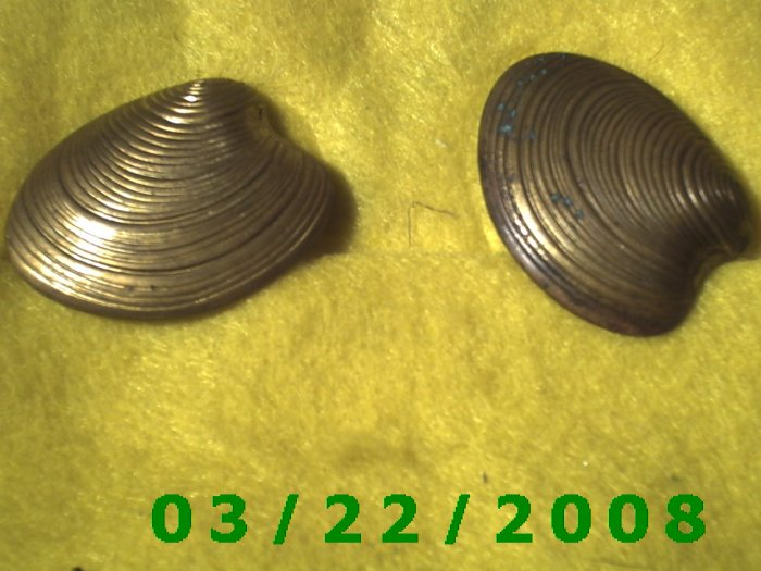 """1 3/8 x 1 7/16"""" Gold Button Cover (Clam  (R009)"""