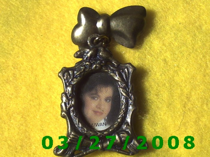 Bronze Oval Picture Frame Pin  (004)
