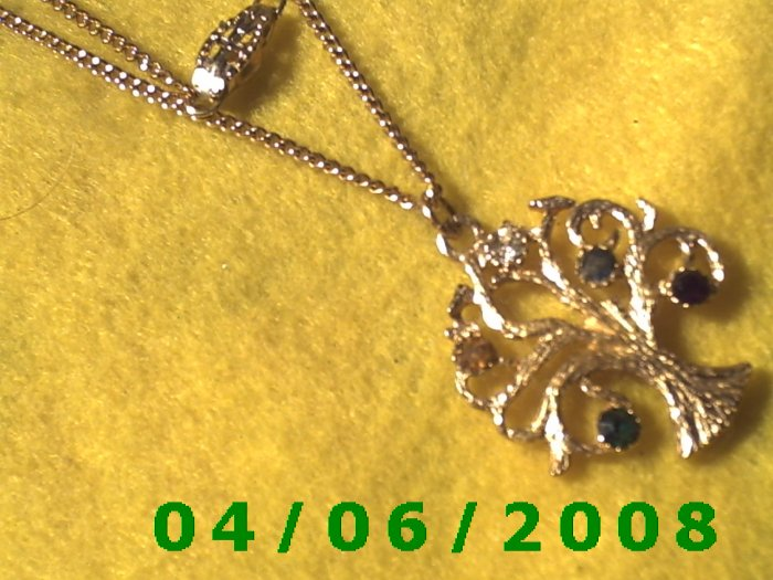 Gold Necklace w/Charm    E5034