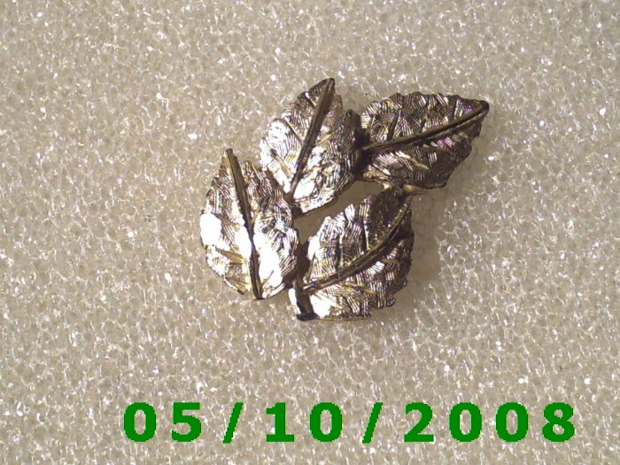 Silver Leaves Pin  A081