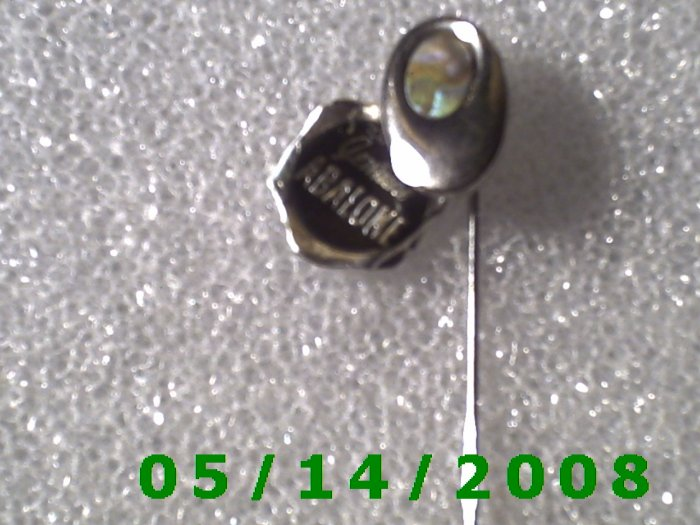 Silver Genuine Abaloni Stick Pin........ B055