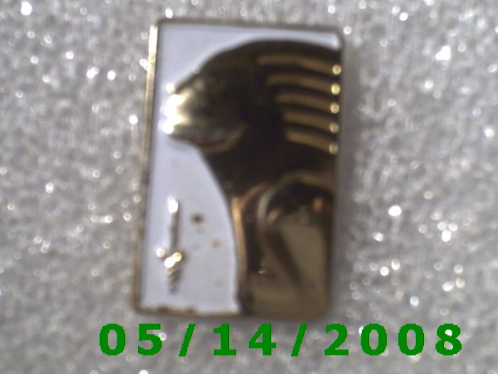 Gold n White Woman Pin   B047
