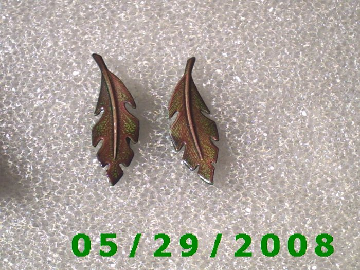 Feathers Clip On Earrings    D038