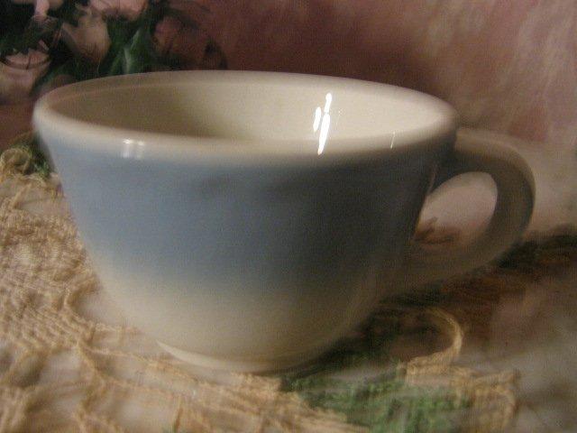 Mayer China ~ Blue Buffalo China Coffee Cup ~