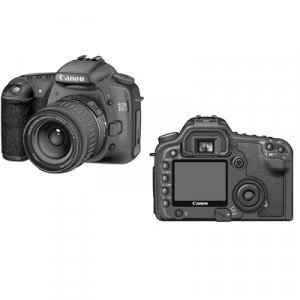 Canon EOS 30D Digital SLR (w/ 2GB CF Card) - Lens Kit - 1234B002