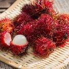 Rambutan Bonsai Red Fruits 5 PCS