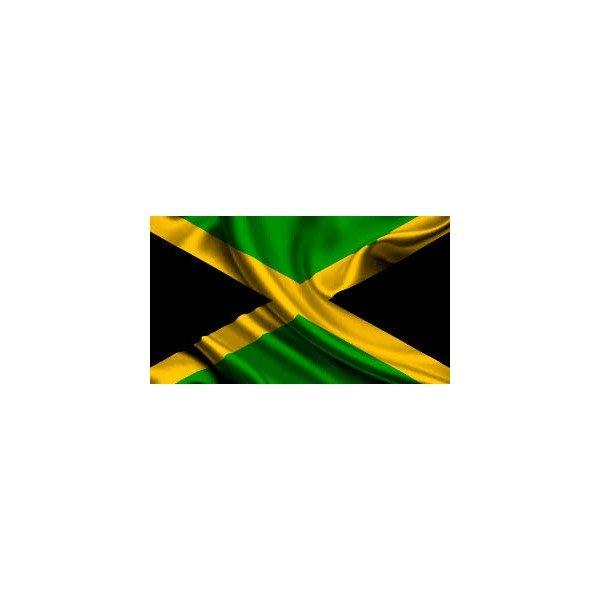 1996 JAMAICA 10 CENT COIN