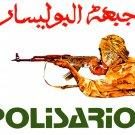Political poster.POLISARIO Fighter.Muslim.Arab.Socialist Fidayeen History art.26