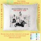 BACKSTREET BOYS DNA WORLD TOUR Album Pillow cases