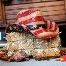Classic American Flag Cowboy Hat 4th Of July One Size Coated Straw Imported