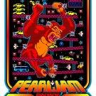 Pearl Jam 24x18 Poster