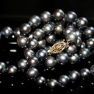 SALE!! - Genuine Black Akoya Pearls Necklace