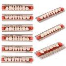 3 Set of Acrylic Resin Denture Teeth Upper Lower Shade Dental 84pc VITA Color A1