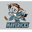 ECHL Kansas City Mavericks Flag 3*5ft (90cm*150cm) Polyester flag Banner decoration