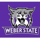 NCAA Weber State Wildcats Flag banner 3ft*5ft