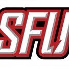Flag of NCAA Saint Francis Red Flash polyester Flag banner 3ft*5ft