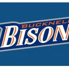 Flag of NCAA Bucknell Bison Newly polyester Flag banner 3ft*5ft