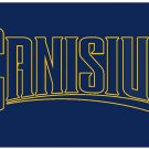 Flag of NCAA Canisius Golden Griffins polyester Flag banner 3ft*5ft
