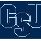 Flag of NCAA Charleston Southern Buccaneers polyester Flag banner 3ft*5ft