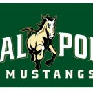 Flag of NCAA Cal Poly Mustangs Newly polyester Flag banner 3ft*5ft