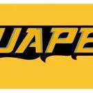Flag of NCAA Arkansas-Pine Bluff Golden Lions polyester Flag banner 3ft*5ft