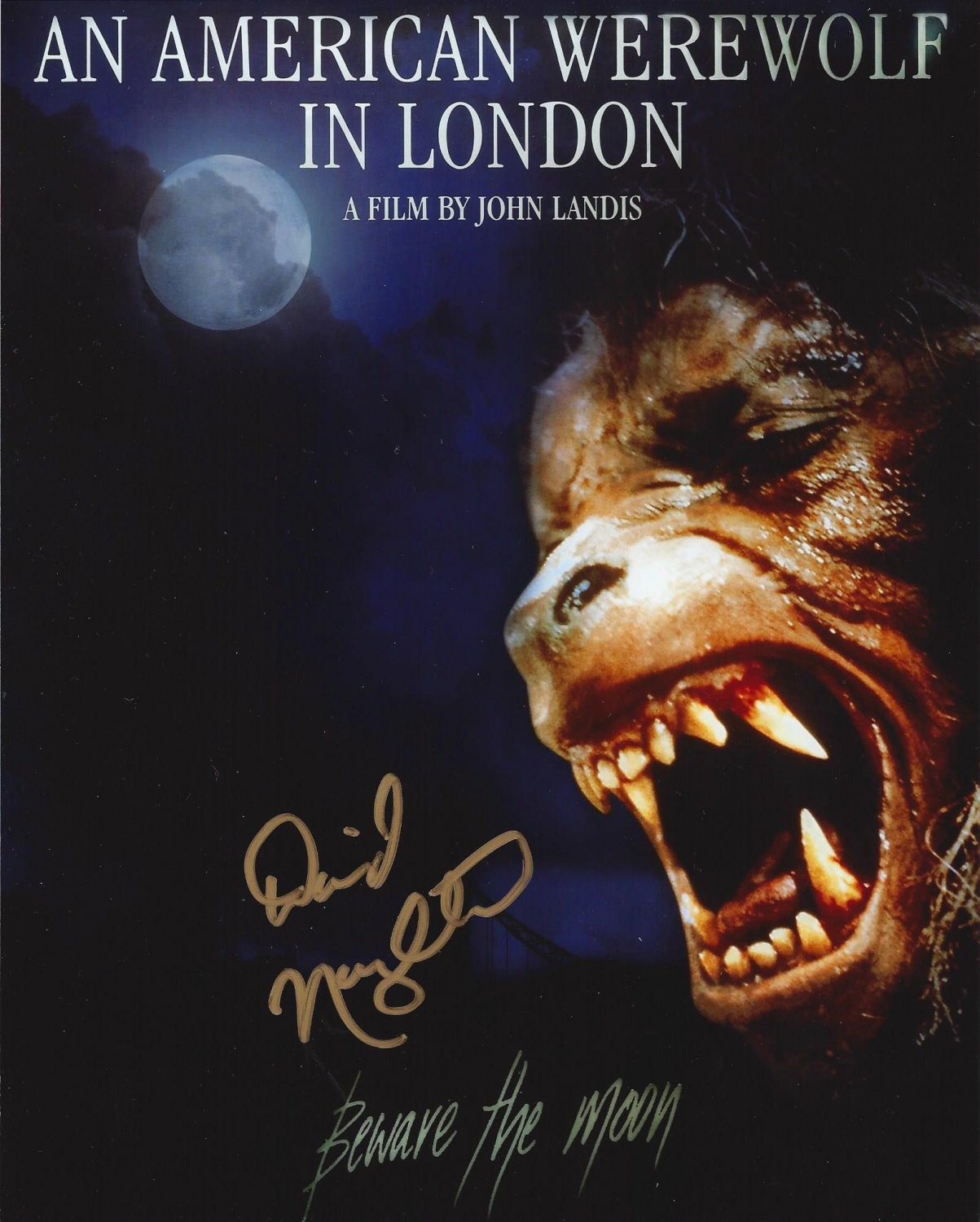"""David Naughton An American in London 8 X 10"""" Autographed Photo (Ref:00000167)"""