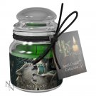Lisa Park Protection Glass Jar Candle Spell (9 cm) Wicca, Witchcraft, Pagan, Occult