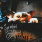 """Mark Dobson The Gremlins (1984) 8 X 10"""" Autographed signed Photo (Reprint 2074) Great Gift Idea!"""